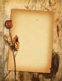 το ξηρό παλαιό έγγραφο αυξήθηκε Στοκ φωτογραφία με δικαίωμα ελεύθερης χρήσης