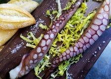 Το ξηρό χταπόδι για τρώει Στοκ Φωτογραφίες