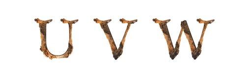 Το ξύλινο U Β W σύστασης αλφάβητου που απομονώνεται στο άσπρο backgroud Στοκ Εικόνες