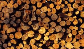 Το ξύλο εμποδίζει το υπόβαθρο με το φως του ήλιου Στοκ Εικόνα