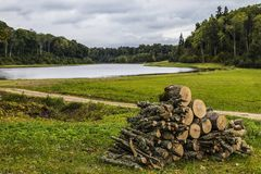Το ξύλο στη λίμνη Στοκ φωτογραφίες με δικαίωμα ελεύθερης χρήσης