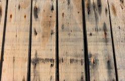 Το ξύλο της σύστασης Στοκ Φωτογραφίες