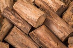 Το ξύλινο άνευ ραφής υπόβαθρο με τα κολοβώματα, περικοπές δέντρων, καταγράφει, υπόβαθρο οικολογίας Στοκ Φωτογραφία