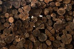 Το ξύλινο άνευ ραφής υπόβαθρο με τα κολοβώματα, περικοπές δέντρων, καταγράφει, υπόβαθρο οικολογίας Στοκ φωτογραφία με δικαίωμα ελεύθερης χρήσης