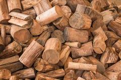 Το ξύλινο άνευ ραφής υπόβαθρο με τα κολοβώματα, περικοπές δέντρων, καταγράφει, υπόβαθρο οικολογίας Στοκ Εικόνες