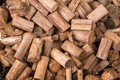 Το ξύλινο άνευ ραφής υπόβαθρο με τα κολοβώματα, περικοπές δέντρων, καταγράφει, υπόβαθρο οικολογίας Στοκ Εικόνα