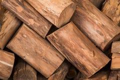 Το ξύλινο άνευ ραφής υπόβαθρο με τα κολοβώματα, περικοπές δέντρων, καταγράφει, υπόβαθρο οικολογίας Στοκ εικόνα με δικαίωμα ελεύθερης χρήσης