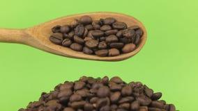 Το ξύλινο κουτάλι χύνει τα φασόλια καφέ στο σωρό των φασολιών καφέ σε μια πράσινη οθόνη απόθεμα βίντεο