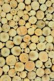 Το ξύλινο σιτάρι φέρνει συνολικά έναν πίνακα, Στοκ Εικόνες