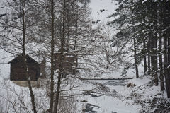 Το ξύλινο σπίτι το χειμώνα Στοκ Εικόνα