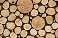 Το ξύλινο υπόβαθρο σύστασης έχει πολλά κούτσουρα που κόβουν από το μεγάλο και μικρό δέντρο Στοκ εικόνα με δικαίωμα ελεύθερης χρήσης