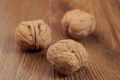 Το ξύλο καρυδιάς και τα καρύδια Στοκ Εικόνες