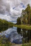 Το ξύλο στα coas λιμνών Στοκ φωτογραφίες με δικαίωμα ελεύθερης χρήσης