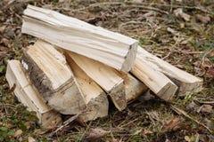Το ξύλο στη χλόη στο στρατόπεδο Στοκ Εικόνες