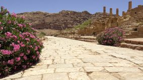 Το οδόστρωμα μέσα της Petra απόθεμα βίντεο