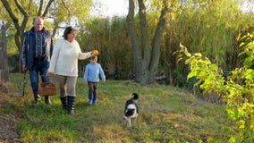 Το οικογενειακό ταξίδι στη φύση, ηλικιωμένοι άνθρωποι με τα εγγόνια περπατά στο πάρκο φθινοπώρου με το σκυλί απόθεμα βίντεο