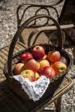 Το οργανικό μήλο στο α Στοκ Φωτογραφία