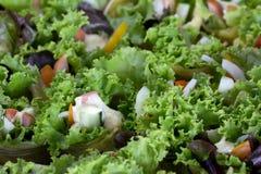 Το λουκάνικο crepe η πράσινη σαλάτα Στοκ εικόνα με δικαίωμα ελεύθερης χρήσης