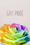 Το ουράνιο τόξο αυξήθηκαν και η ομοφυλοφιλική υπερηφάνεια κειμένων στοκ φωτογραφία με δικαίωμα ελεύθερης χρήσης