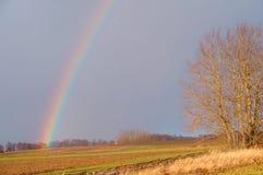 Το ουράνιο τόξο σε έναν τομέα, η ατμόσφαιρα είναι ουράνιο τόξο μετά από τη βροχή Στοκ Εικόνα