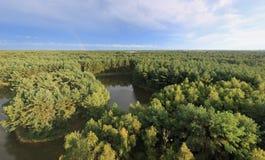 Το ουράνιο τόξο στο ηλιοβασίλεμα πέρα από το δάσος στο φυσικό πάρκο κάλεσε Lommeles Σαχάρα σε Belgiu Στοκ φωτογραφία με δικαίωμα ελεύθερης χρήσης
