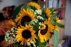 Το λουλούδι ηλίανθων Στοκ Εικόνα