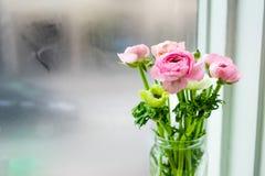Το λουλούδι σε ένα βάζο Στοκ εικόνες με δικαίωμα ελεύθερης χρήσης