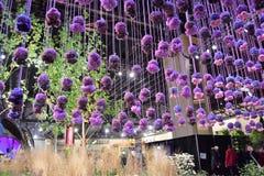 Το λουλούδι της Φιλαδέλφειας παρουσιάζει 2017 Στοκ Φωτογραφίες