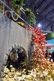 Το λουλούδι της Φιλαδέλφειας παρουσιάζει 2017 Στοκ εικόνες με δικαίωμα ελεύθερης χρήσης