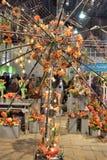 Το λουλούδι της Φιλαδέλφειας παρουσιάζει 2017 Στοκ φωτογραφία με δικαίωμα ελεύθερης χρήσης