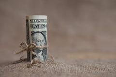 Το δολάριο, που δένεται με ένα σχοινί Στοκ εικόνες με δικαίωμα ελεύθερης χρήσης