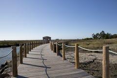 Το πάρκο κάνει το fundo carreiro, Αβέιρο, Πορτογαλία Στοκ εικόνα με δικαίωμα ελεύθερης χρήσης
