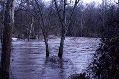 Το πάρκο μάχης δύσκολο τοποθετεί την πλημμύρα της βόρειας Καρολίνας Στοκ φωτογραφίες με δικαίωμα ελεύθερης χρήσης
