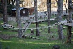 Το πάρκο περιπέτειας στο δάσος Στοκ εικόνες με δικαίωμα ελεύθερης χρήσης
