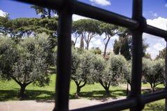 Το πάρκο στην ιστορική περιοχή Palatino της Ρώμης, μέσω των φραγμών χάλυβα μιας πύλης στοκ εικόνες με δικαίωμα ελεύθερης χρήσης