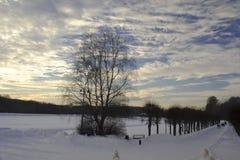 Το πάρκο στη Ρωσία Στοκ εικόνες με δικαίωμα ελεύθερης χρήσης