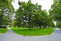 Το πάρκο Στοκ Φωτογραφία