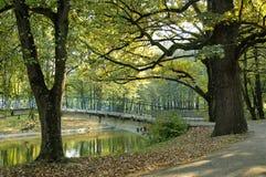 Το πάρκο Στοκ εικόνα με δικαίωμα ελεύθερης χρήσης