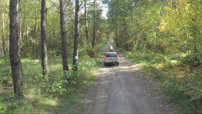 Το πέταγμα πέρα από το αυτοκίνητο στο δάσος το quadcopter ακολουθεί το τζιπ στη φύση στη δασική εναέρια έρευνα για το τζιπ πλαϊνή φιλμ μικρού μήκους