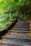 Το πέτρινο σκαλοπάτι στο δάσος στο βουτυρόγαλα πέφτει κρατικό πάρκο Στοκ Φωτογραφίες
