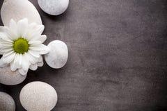 το πήκτωμα ράβδων ανασκόπησης απομόνωσε το οργανικό λευκό wellness σαπουνιών ντους Στοκ φωτογραφία με δικαίωμα ελεύθερης χρήσης