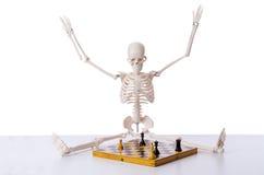 Το παίζοντας παιχνίδι σκακιού σκελετών στο λευκό Στοκ φωτογραφίες με δικαίωμα ελεύθερης χρήσης