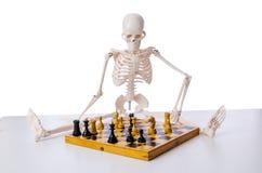 Το παίζοντας παιχνίδι σκακιού σκελετών στο λευκό Στοκ εικόνες με δικαίωμα ελεύθερης χρήσης
