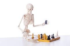 Το παίζοντας παιχνίδι σκακιού σκελετών στο λευκό Στοκ εικόνα με δικαίωμα ελεύθερης χρήσης