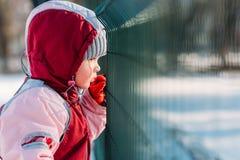 Το παιδάκι κοιτάζει μέσω των φραγμών το χειμώνα στοκ φωτογραφία με δικαίωμα ελεύθερης χρήσης