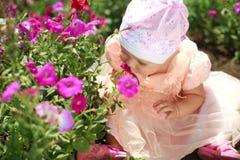 το παιδί αρώματος απολαμβάνει το κορίτσι λουλουδιών λίγα στοκ εικόνα