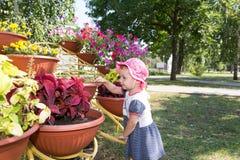 Το παιδί εξετάζει τα λουλούδια Στοκ φωτογραφία με δικαίωμα ελεύθερης χρήσης