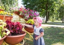 Το παιδί εξετάζει τα λουλούδια Στοκ Φωτογραφίες