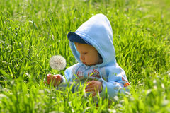 το παιδί ερευνά τη φύση Στοκ Φωτογραφία