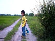 Το παιδί παίζει ένα φανάρι κοντά στον τομέα ορυζώνα φιλμ μικρού μήκους